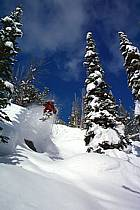 Ski-freeride, Jackson Hole, Wyoming, ref da2001-20GE