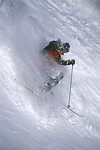 Ski-freeride, Jackson Hole, Wyoming, ref da2008-11GE