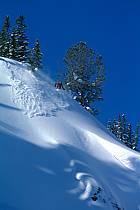 Ski-freeride, Jackson Hole, Wyoming, ref da2010-08GE