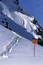 Ski-freeride, Jackson Hole, Wyoming, ref da2011-01LE