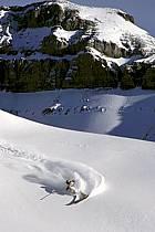 Ski-freeride, Lake Louise, Alberta, ref da2371-31GE