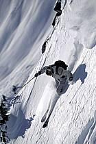 Ski-freeride, Lake Louise, Alberta, ref da2372-12GE