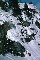 Ski-freeride, Lake Louise, Alberta, ref da2373-08GE