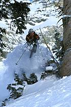 Ski-freeride, Snowbird, Utah, ref da2921-02GE