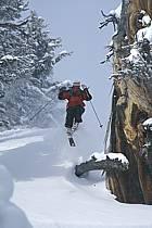 Ski-freeride, Jackson Hole, Wyoming, ref da2925-37GE