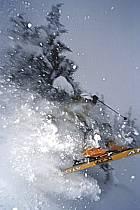 Ski-freeride, Grand Targhee, Wyoming, ref da2930-01GE