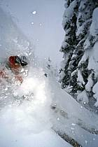 Ski-freeride, Grand Targhee, Wyoming, ref da2930-16GE