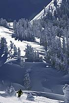 Ski-freeride, Grand Targhee, Wyoming, ref da2933-14GE