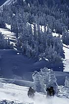 Ski-freeride, Grand Targhee, Wyoming, ref da2933-18GE