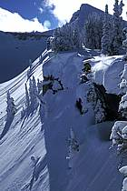 Ski-freeride, Grand Targhee, Wyoming, ref da2934-12GE