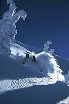 Ski-freeride, Grand Targhee, Wyoming, ref da2939-06GE