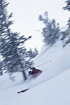 Ski-freeride, Jackson Hole, Wyoming, ref da2950-15GE