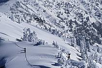 Ski-freeride, Grand Targhee, Wyoming, ref dc2937-22GE