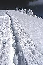 Ski-freeride, Grand Targhee, Wyoming, ref dc2937-35GE