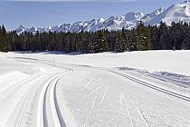 Traces de ski de fond, Beauregard, Aravis - Cross-country skiing tracks, Beauregard, Aravis, ref dd081233LE