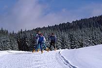 Skating, Vallée de la Valserine, Monts Jura, Ain, Alpes, ref dd2397-19GE