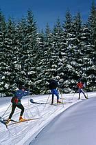 Skating, Vallée de la Valserine, Monts Jura, Ain, Alpes, ref dd2398-03GE