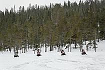 Motoneige, Laponie, ref de061742GE