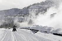 Motoneige dans Yellowstone National Park, Wyoming, Montana - Snowmobiling in Yellowstone National Park, Wyoming, Montana, ref de081063GE
