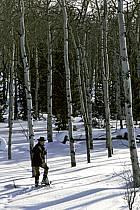 Gros Ventre, Wyoming, ref df1995-02GE