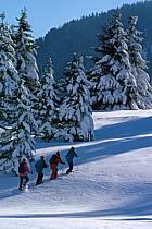 Plateau des Glières, Haute-Savoie, ref df2125-34GE
