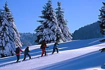 Plateau des Glières, Haute-Savoie, ref df2126-02GE