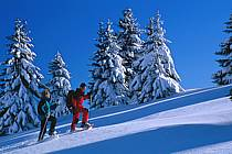 Plateau des Glières, Haute-Savoie, ref df2126-16GE