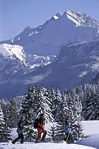 Plateau des Glières, Haute-Savoie, Alpes, ref df2127-04GE