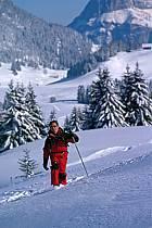 Plateau des Glières, Haute-Savoie, ref df2128-21GE