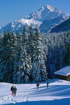 Plateau des Glières, Haute-Savoie, ref df2128-36GE