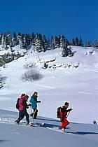 Plateau des Glières, Haute-Savoie, ref df2129-22GE