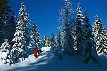 Plateau des Glières, Haute-Savoie, ref df2129-36GE