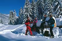 Plateau des Glières, Haute-Savoie, ref df2130-35GE