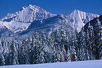 Plateau des Glières, Haute-Savoie, ref df2131-18GE