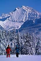 Plateau des Glières, Haute-Savoie, ref df2131-29GE