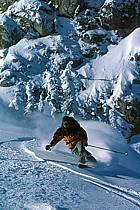 Ski freeride, Fernie, Colombie Britannique, ref dk2606-07GE