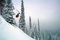 Fernie, Ski freeride, Ski freestyle, Colombie Britannique, ref dk2609-08GE