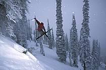 Fernie, Ski freeride, Ski freestyle, Colombie Britannique, ref dk2609-35GE