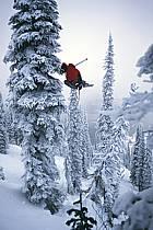 Fernie, Ski freeride, Ski freestyle, Colombie Britannique, ref dk2610-05GE