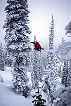 Fernie, Ski freeride, Ski freestyle, Colombie Britannique, ref dk2610-06GE