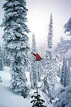 Fernie, Ski freeride, Ski freestyle, Colombie Britannique, ref dk2610-07GE
