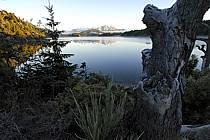 Lago Moreno, San Carlos de Bariloche, Patagonie, ref ea054726GE