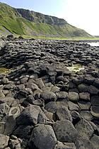 Basaltic stones, Giant's Causeway, Ulster / Orgues basaltiques, Chaussée des Géants, Irlande du Nord, ref ea071895GE