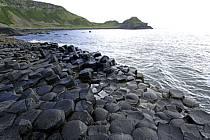 Basaltic stones, Giant's Causeway, Ulster / Orgues basaltiques, Chaussée des Géants, Irlande du Nord, ref ea071931GE