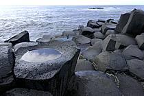 Basaltic stones, Giant's Causeway, Ulster / Orgues basaltiques, Chaussée des Géants, Irlande du Nord, ref ea071935GE
