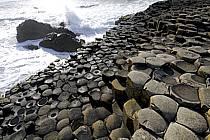 Basaltic stones, Giant's Causeway, Ulster / Orgues basaltiques, Chaussée des Géants, Irlande du Nord, ref ea071939GE