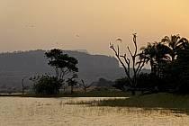 Rives du lac de Samaya - Border of Samaya lake, ref ea072779LE