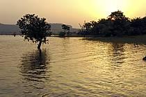 Rives du lac de Samaya - Border of Samaya lake, ref ea072780LE
