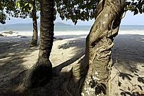 Sur la plage, îles de Loos - On the beach, Loos islands, ref ea072833LE