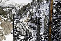 Yellowstone Falls, Yellowstone National Park, Wyoming, Montana - Yellowstone Falls, Yellowstone National Park, Wyoming, Montana, ref ea080855LE